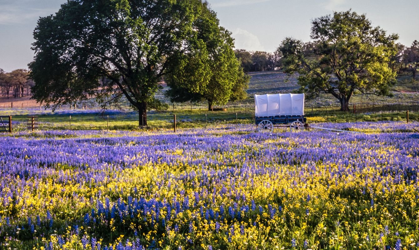 Texas Hill Country in the spring with covered wagon