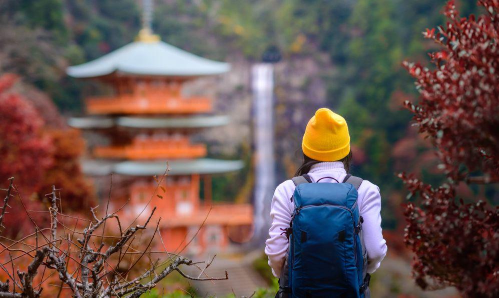 woman traveler tourist enjoy looking the wonderful shrine
