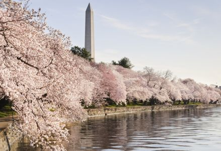 The Best Places to Be in America in March