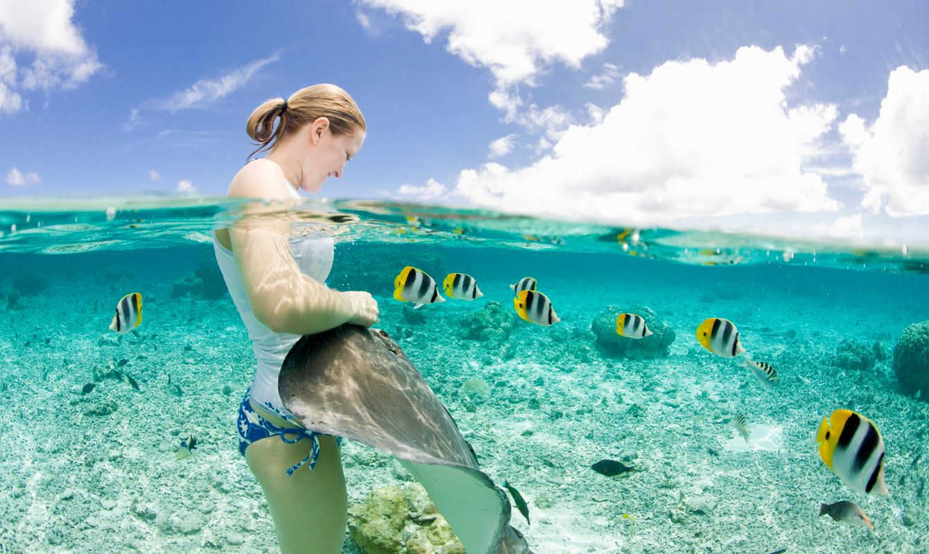 Woman with a and stingray (Himantura fai) and colorful blackback butterflyfish during a lagoon safari trip in Bora-Bora Lagoon, French Polynesia.
