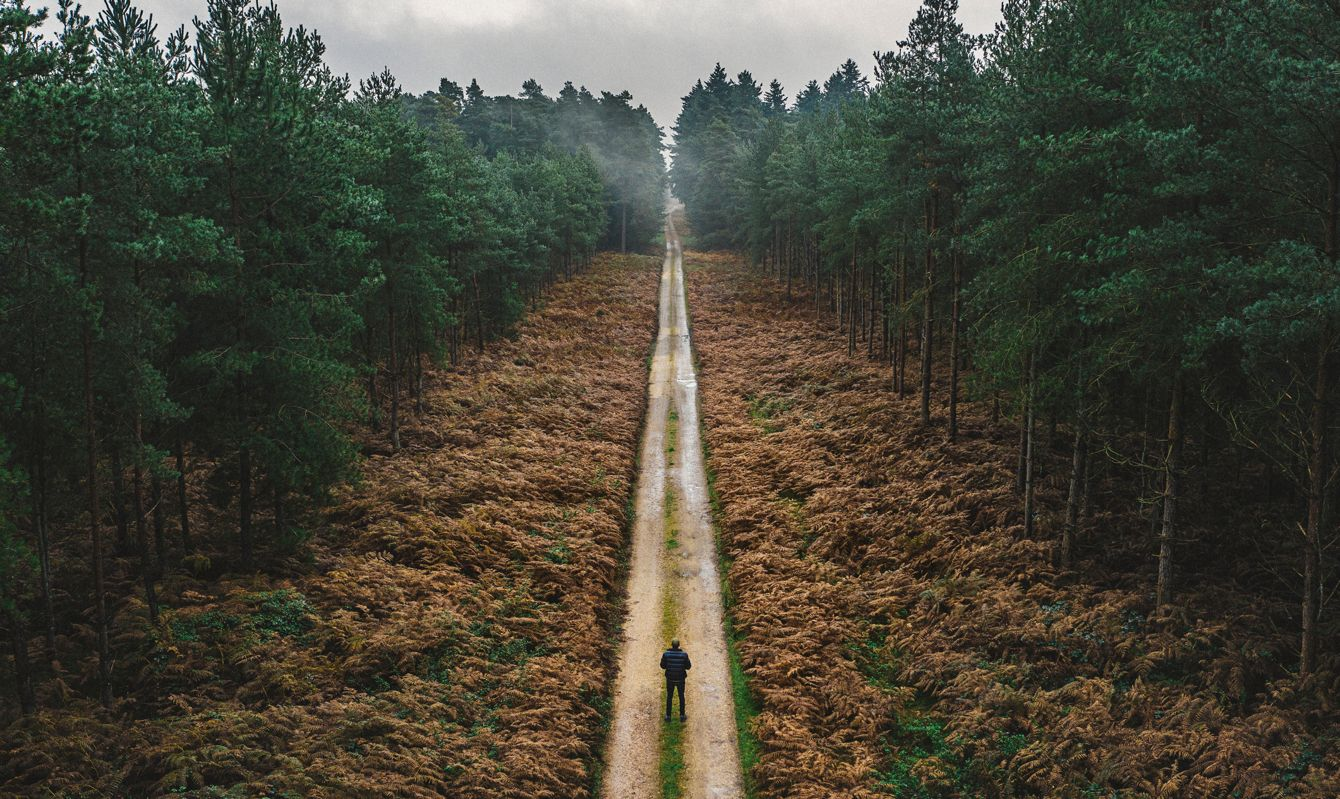 Man walking along forest track