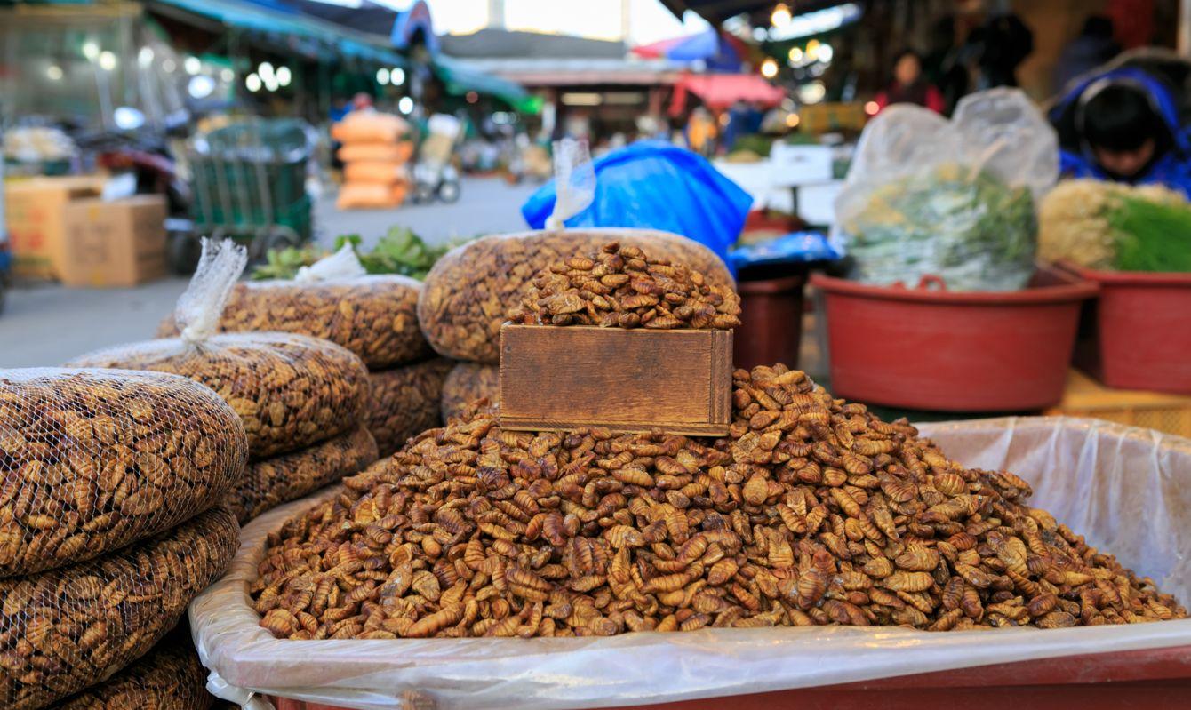 Dried bug Beondegi 번데기 in korean market food