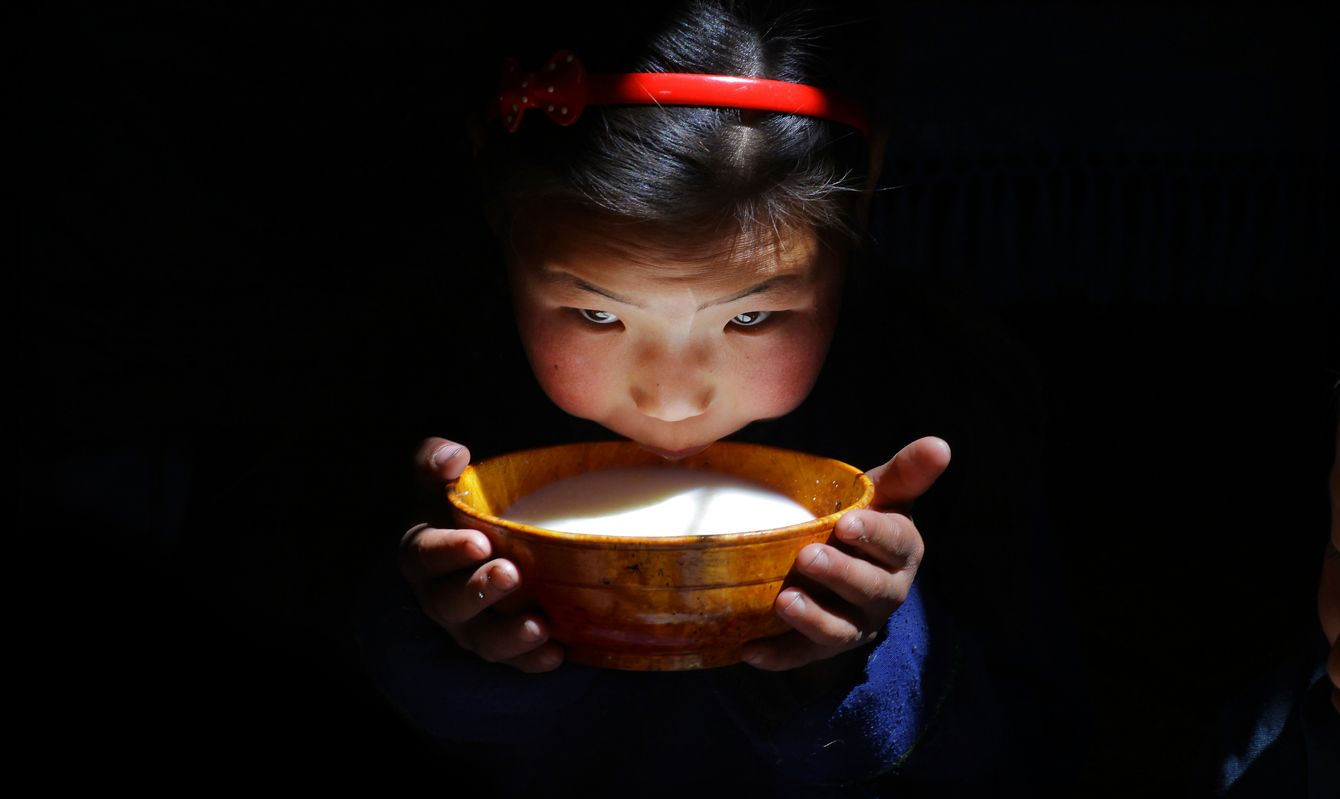 In a dimly lit her, a young Mongolian girl holds a bowl of airag (aryag , fermented horses milk) bringing it to her lips to drink. This is a nomadic Mongolian family who live and farm in the Tsenkher Valleys part of the great Mongolian Steppe, nestled in the foothills of the Khangai mountains in Arkhangai province, Central Mongolia. This area is known locally as the Blue River Valley.