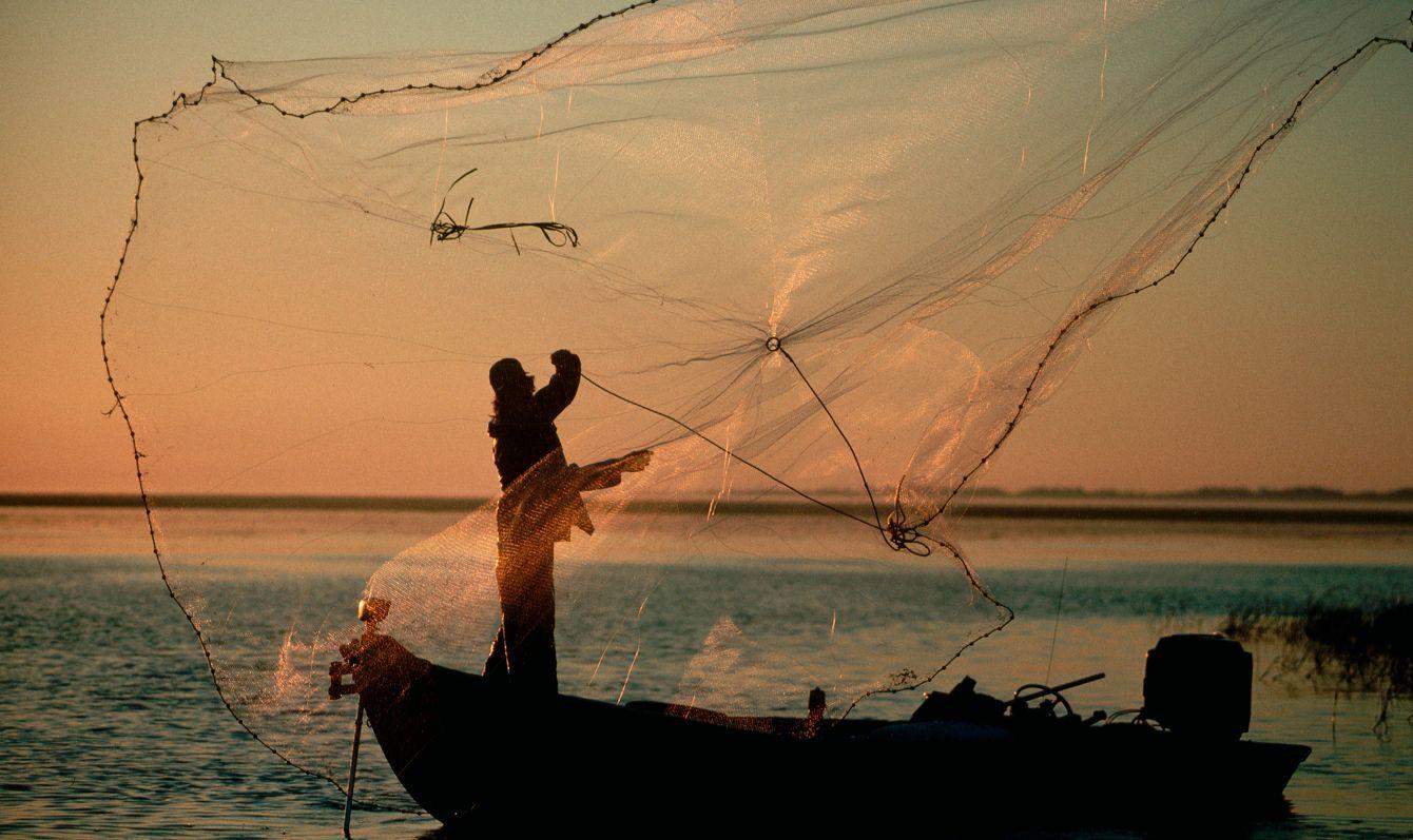 Fisherman Throwing His Net Into Lake Okeechobee