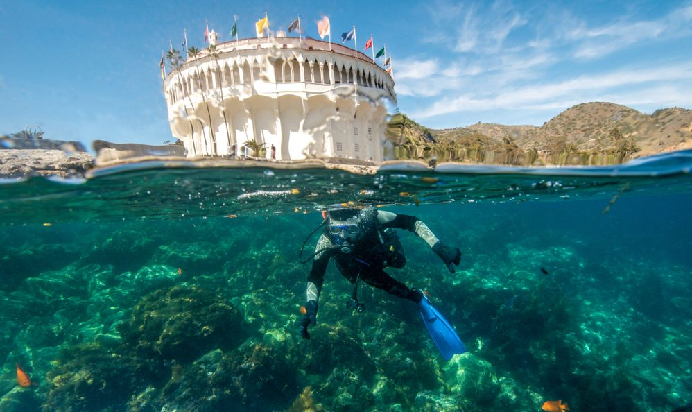 A Young Male Scuba Diver Begins a Dive at the Casino Point Underwater Park at Santa Catalina Island in California
