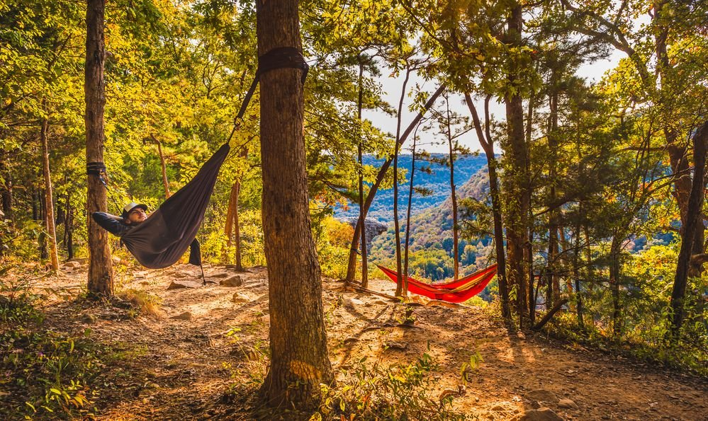 Two hikers hammock along Whitaker Point Trail
