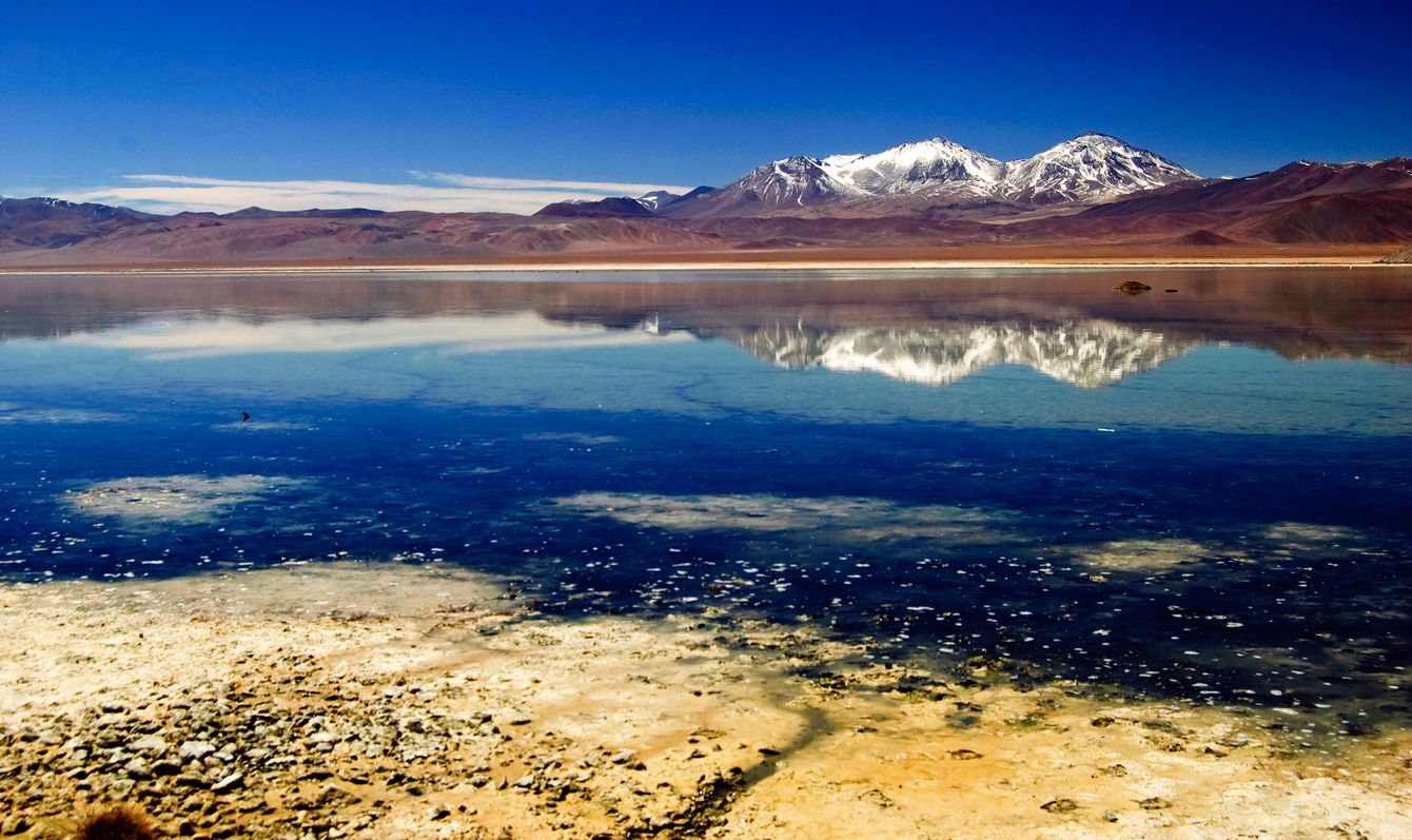 """""""Santa Rosa"""" lagoon at about 3500 meters over the sea level, part of the """"Maricunga"""" salar. Parque Nacional Nevado Tres Cruces."""
