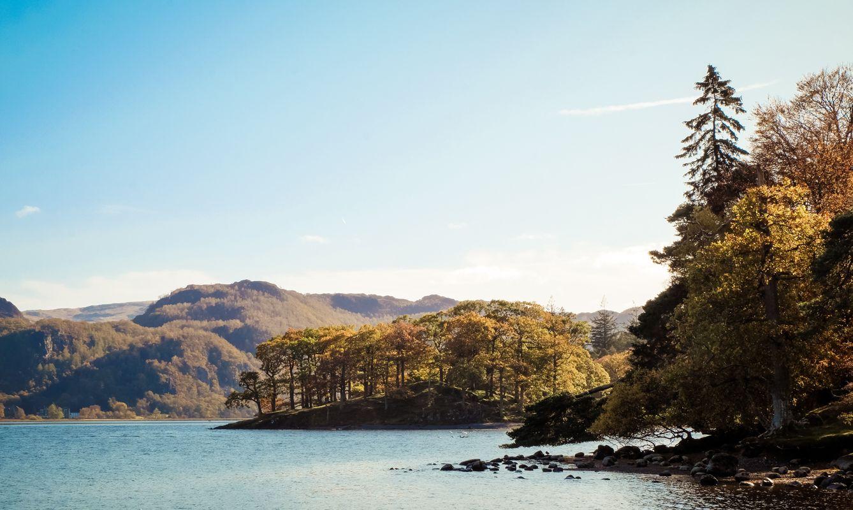 green trees near a lake during the daytime Lake District, Keswick, Cumbria, UK