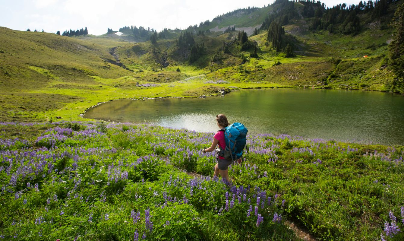 A woman passes a lake as she hikes along a dirt trail surrounded by wildflowers while backpacking through Olympic National Park.