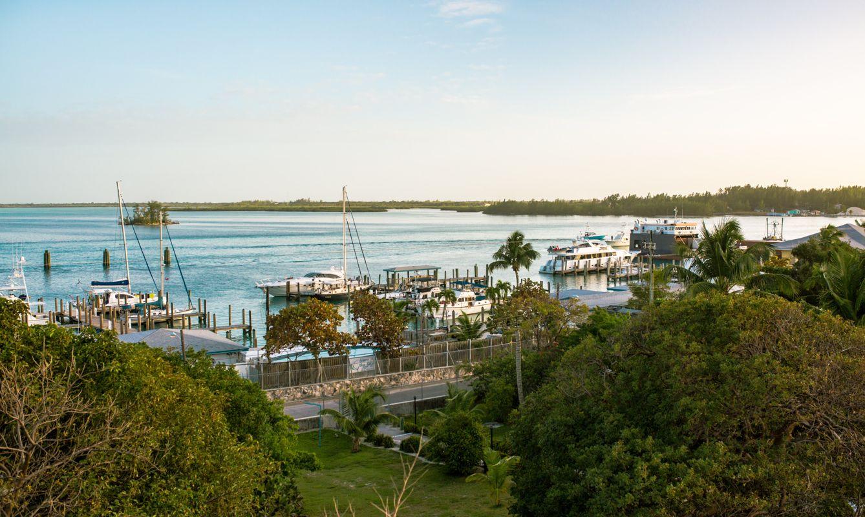 Bimini Harbor