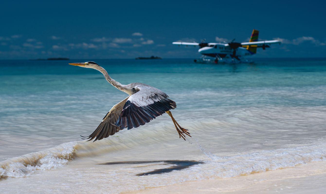 LUX South Ari Atoll Resort & Villas, Maldives