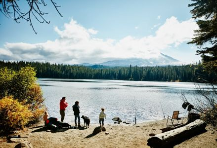 Find Exciting Things to Do in Washington State