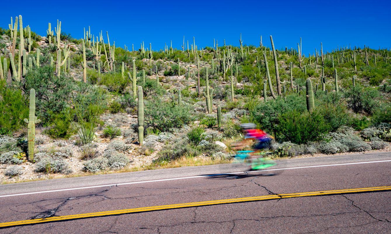 Road on Mt Lemmon in Tucson Arizona