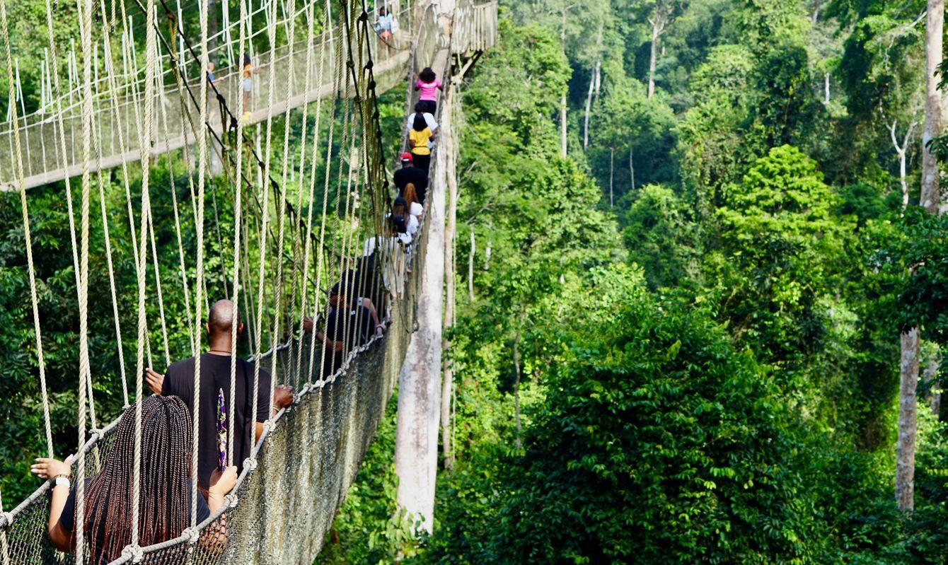 Guests enjoying the canopy walk above the rainforest in Kakum National Park, Ghana