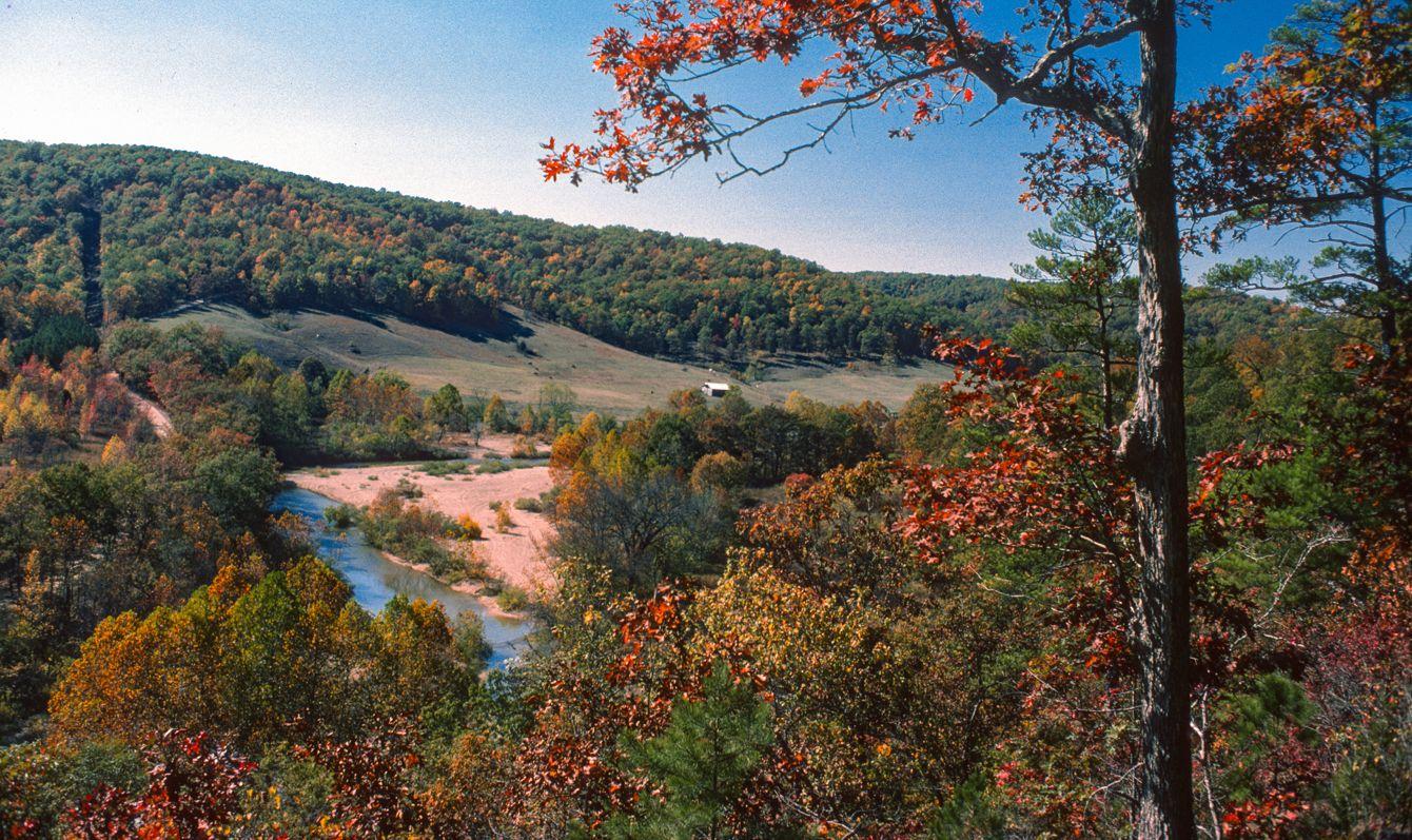 Ozark National Forest, Arkansas autumn