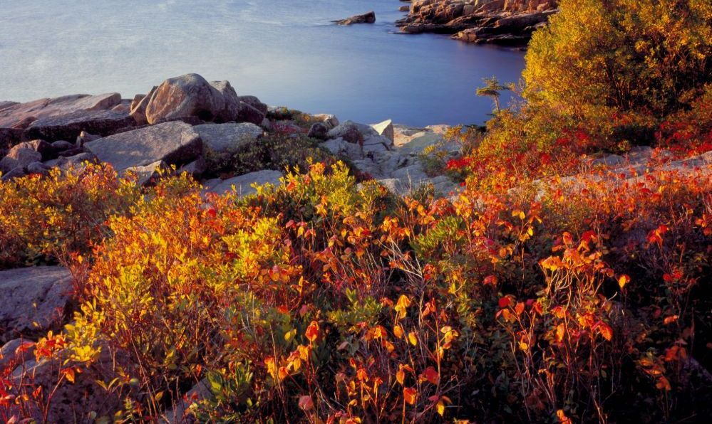 Acadia National Park Maine in the fall