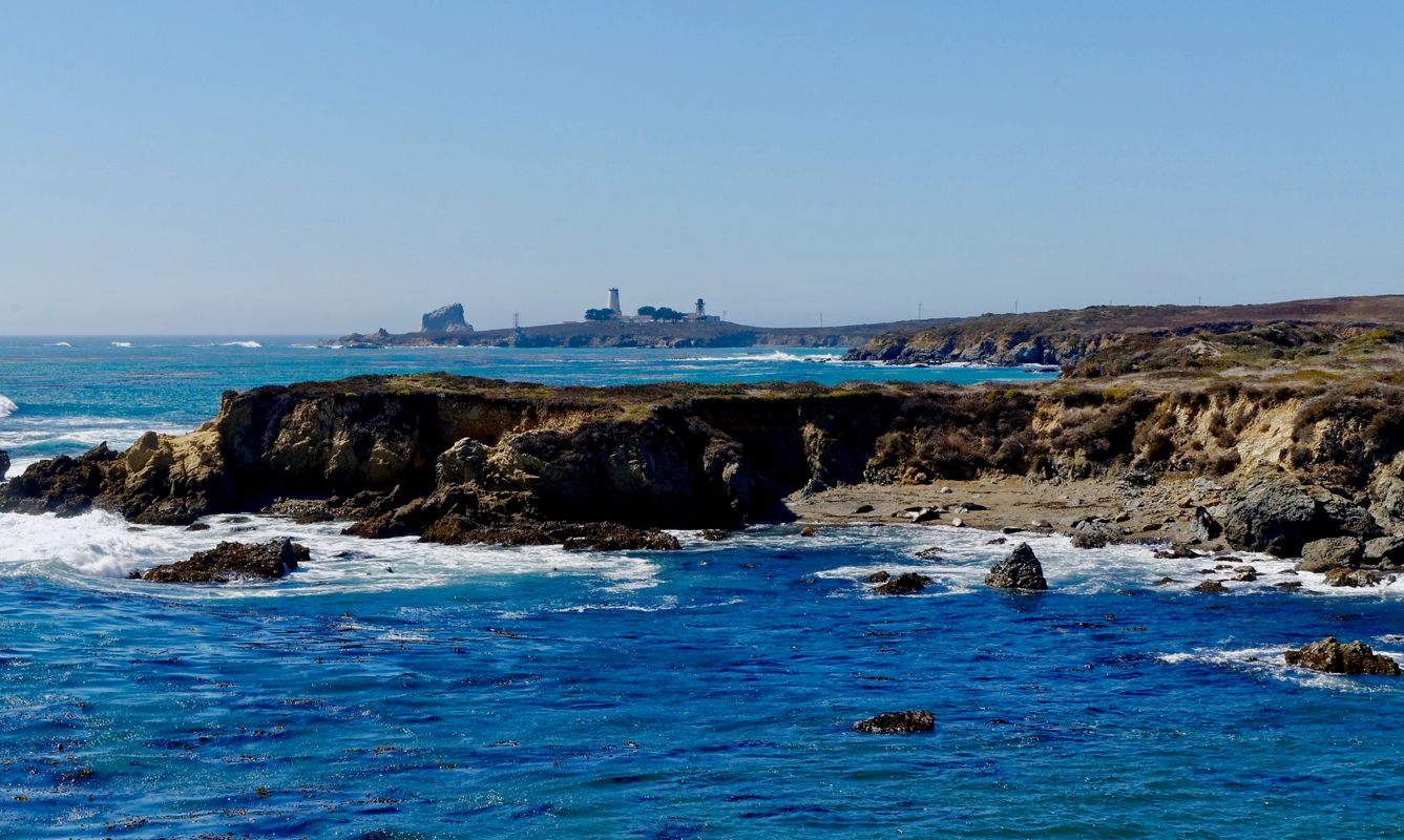 Piedras Blancas Lighthouse in the background with the Elephant Seals in the foreground