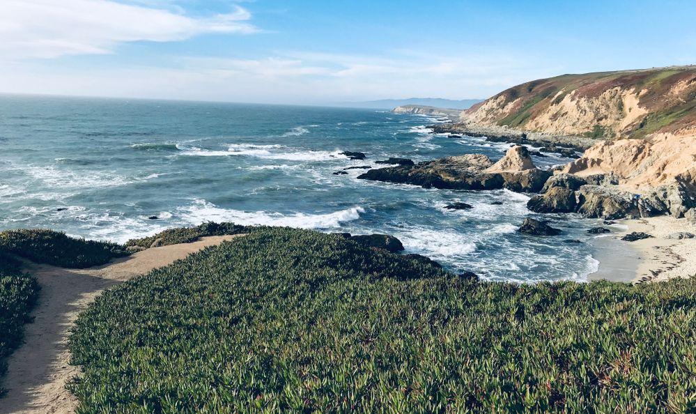Stunning Ocean View From The Bodega Head in Bodega Bay CA