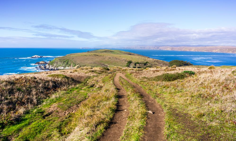Hiking trail on the Pacific Ocean coastline towards Tomales Point, with green grass covering cliffs and bluffs, Point Reyes National Seashore, California