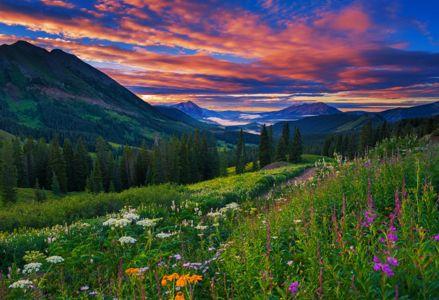 Take a Summer Vacation in Colorado