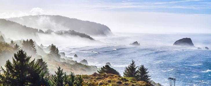 Check Out The Best California Coastline Hikes
