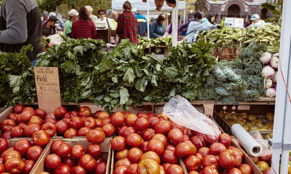 Table with fresh tomatoes for sale at a farmers market in Copley Square on a Fall day