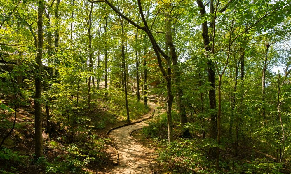 Hiking trail leading to the Garden of the Gods overlooks. Shawnee National Forest, Illinois, USA