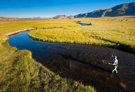 An Angler's Guide to California Fly Fishing