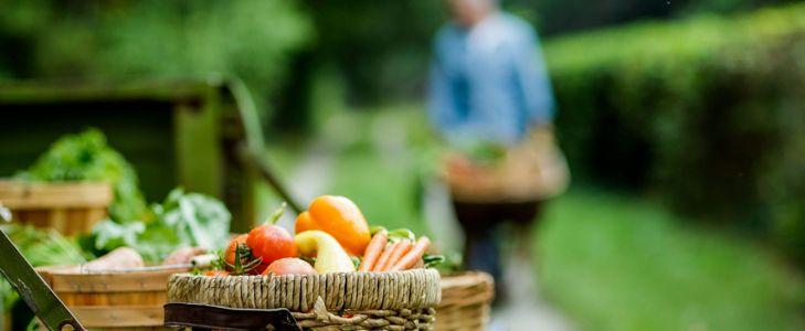 America's Most Amazing Farmers Markets