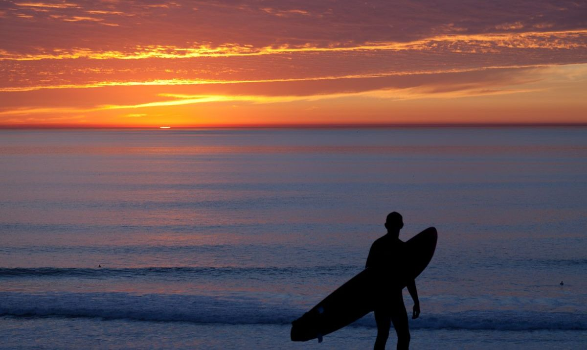 surfer with surfboard watching sunset on shore