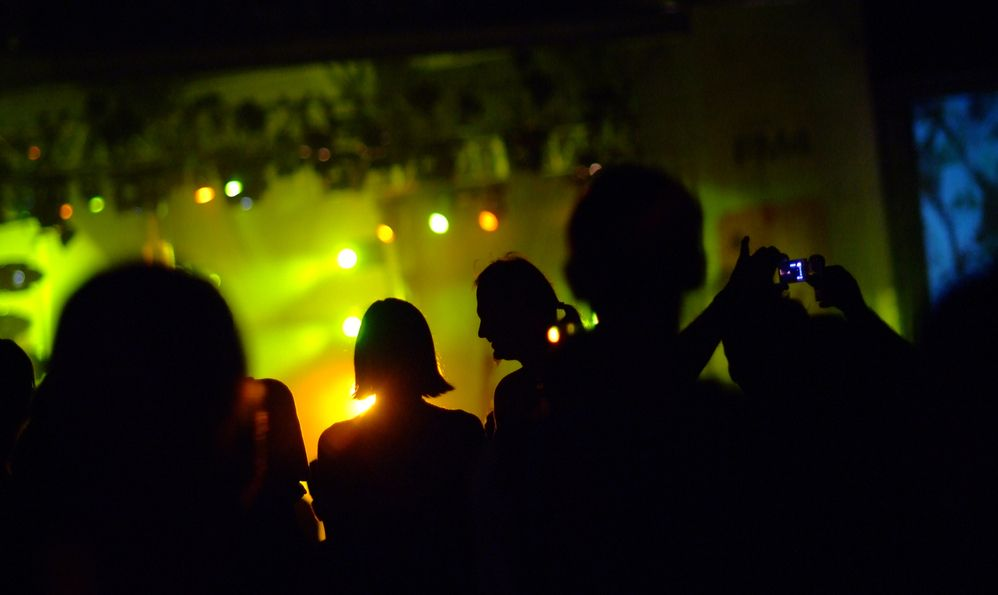 visitors at music festival donauinselfest