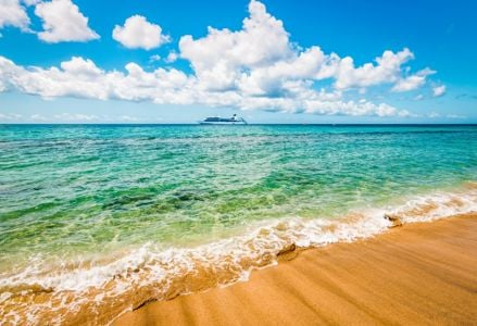 Adventures at Sea: The Worst and Best Cruises